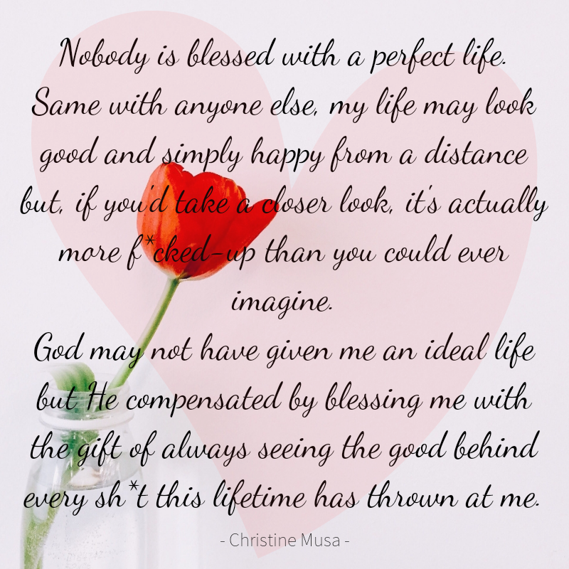 Nobody's Life Is Perfect